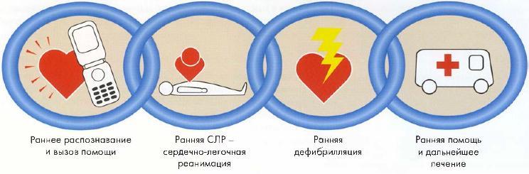Программа курса первой помощи